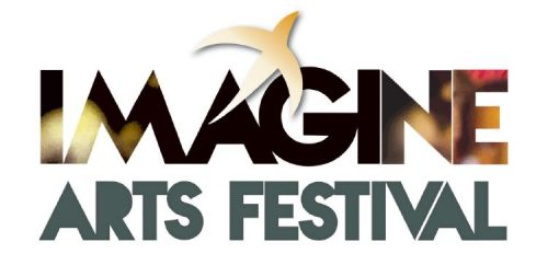 Imagine Arts Festival Artistic Director