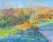 damaris-lysaght-frosty-april-morning- 41x50cm 001