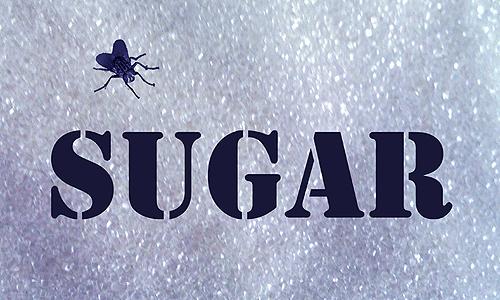 Sugar Pic small